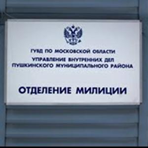 Отделения полиции Ягодного